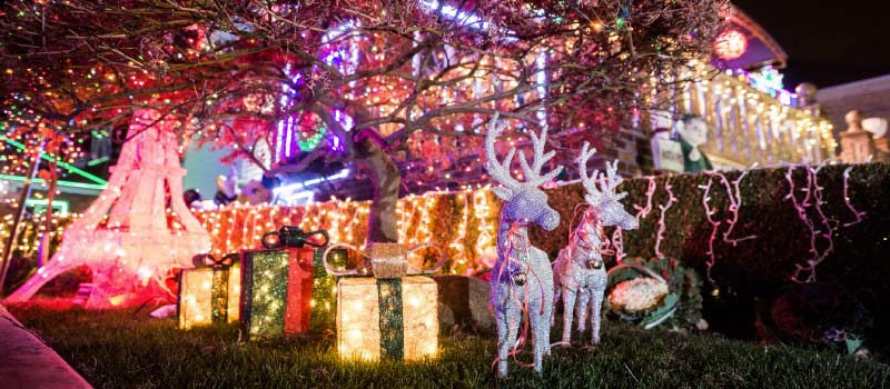 Christmas in NYC : What to Do During the Holidays