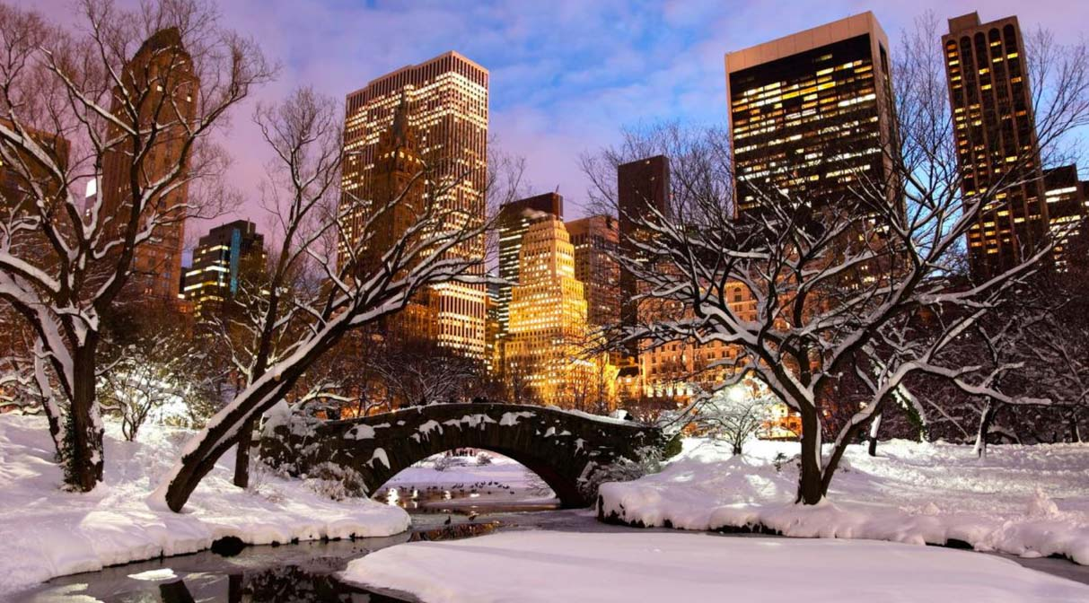 How to celebrate christmas in New York